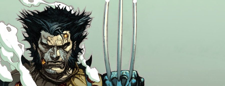 wolverine-hair-explained