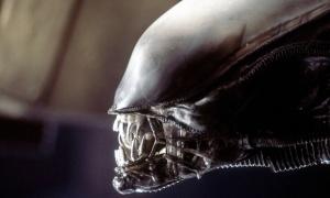 aliens-cameron-ripley